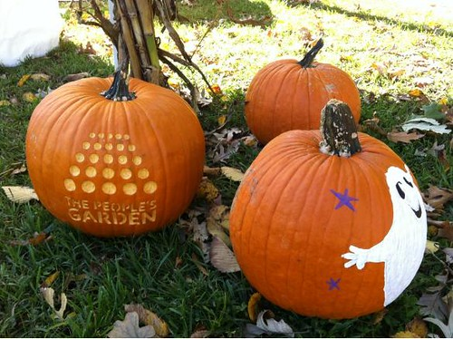 @USDA: Check out this #MyPumpkin, @PeoplesGarden style!