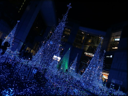 Blue Forest @caretta SHIODOME