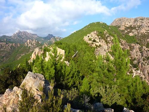 Punta Radichella par la sente de chasseurs : le sommet avec Punta Balardia, Punta Batarchjone et la crête de Radichella