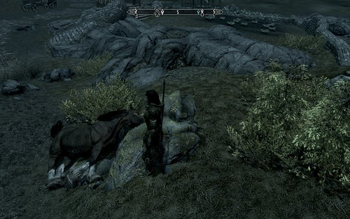 Skyrim - It's hard to keep a horse