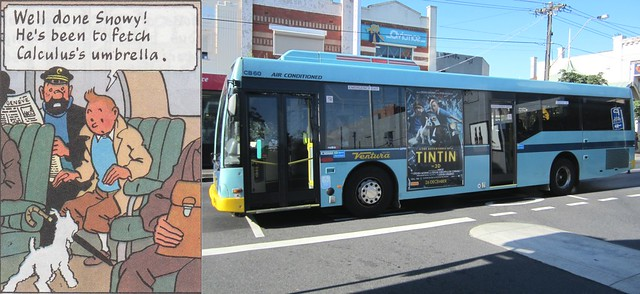 Tintin on a bus