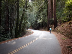Climbing Old Santa Cruz Highway