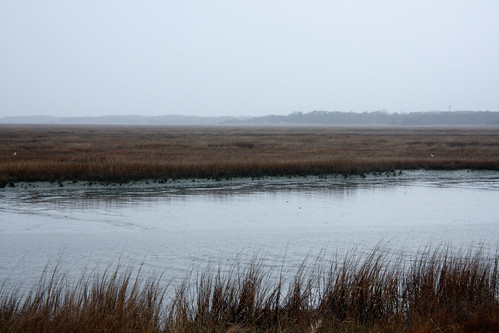 Edwin B Forsythe National Wildlife Refuge