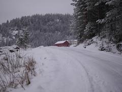1.januar 2012. En grå dag.