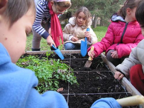 Ricominciamo a coltivare nelle scuole 30