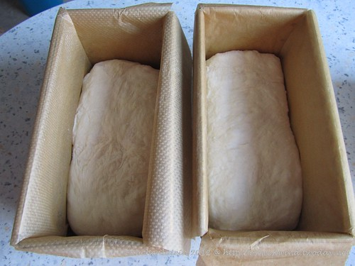 White Loaves Baking with Julia p. 81 (1)