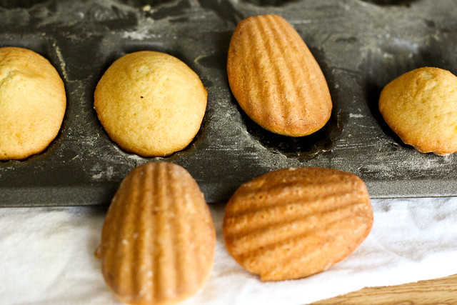 Lemon Glazed Madeleines