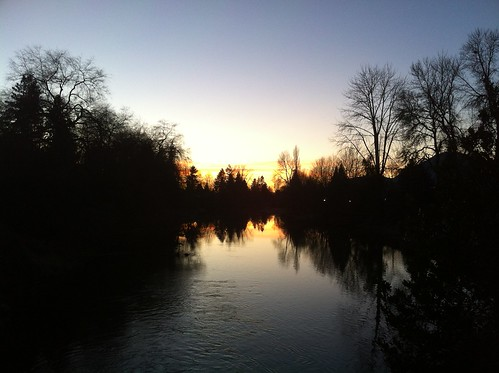 trees sunset canada silhouette river landscape bc britishcolumbia canadian northamerica chilliwack iphone iphone4