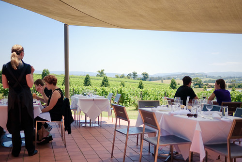 Dining by the vines