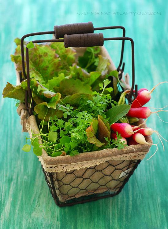 My garden spring Salad
