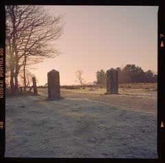 Frosty Gateposts