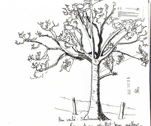 Semaine 3: un arbre