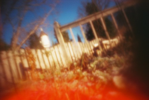 fence, birdhouse, frosted plants