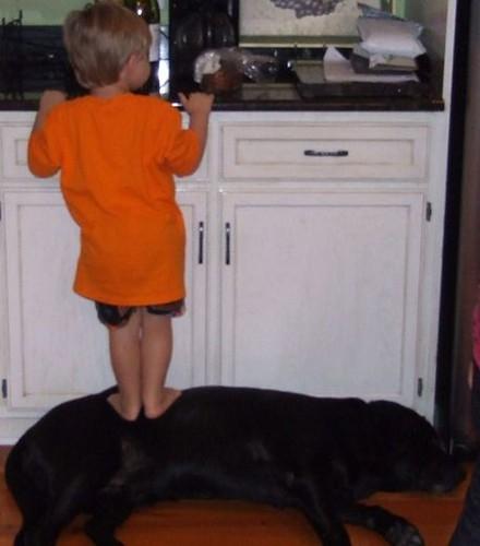 kids and pets.jpg 14