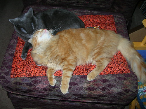 Loki & Rory