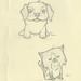 Dog Cat 1.24.12