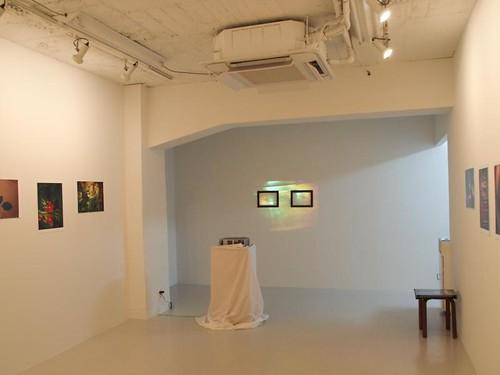 Gallery hinoki plus