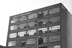 Bacinol Building 3