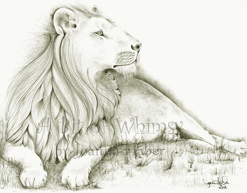 Lion final 2 watermark