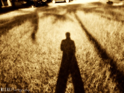 The Shadow of My Self