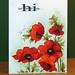 Poppy rouge 010 by jourdainmicheline