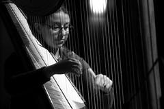 string instrument, harp, monochrome photography, monochrome, black-and-white, string instrument,