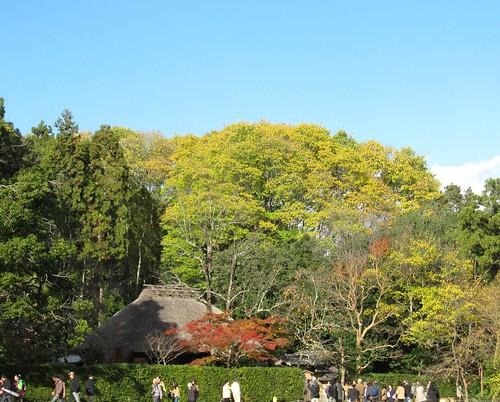 落柿舎 by Poran111