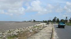 Guyana-2943