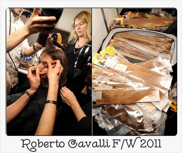 Roberto Cavalli FW RTW 2011
