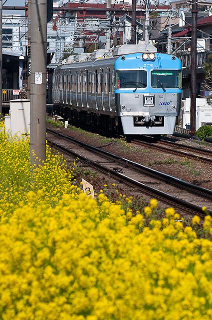 京王電鉄井の頭線3000系 3028F 0414