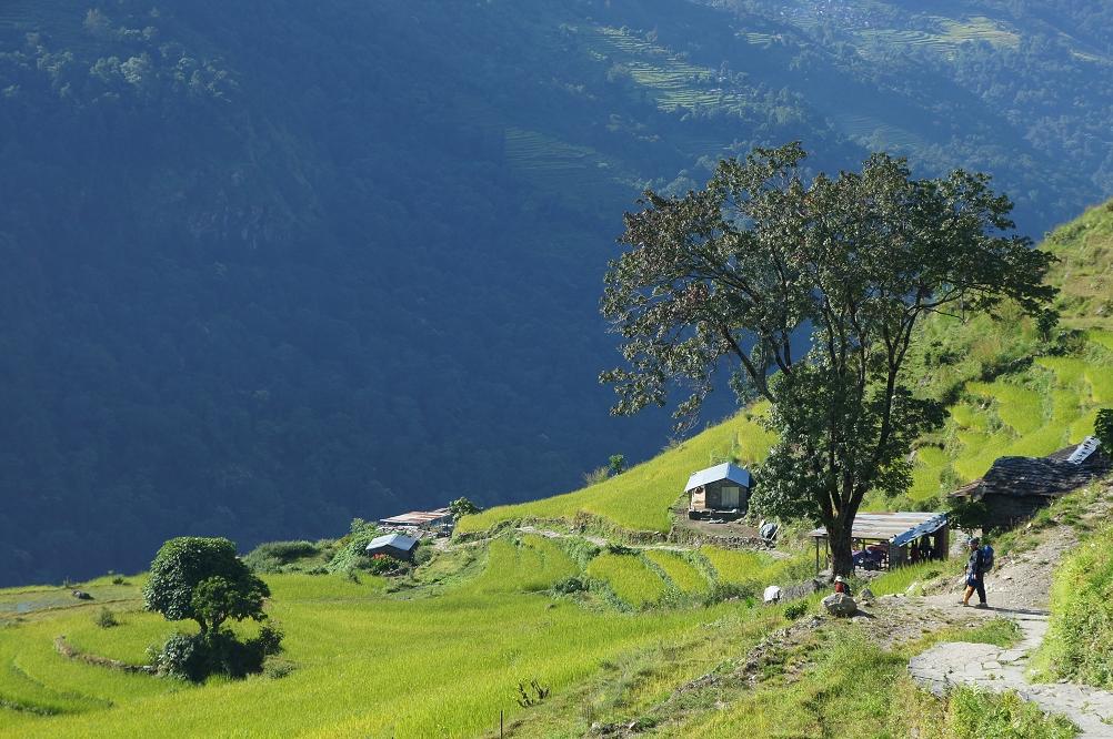 1006_Nepal_071