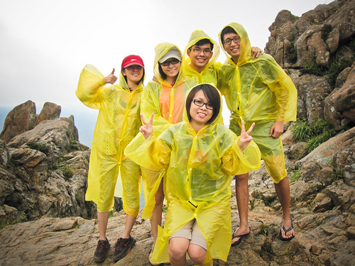 the Yellow Ponchos
