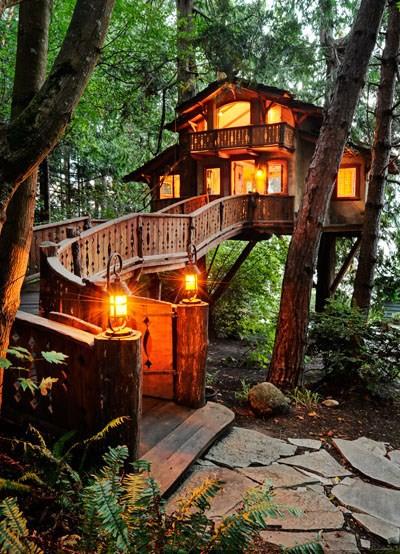 treehouse_019