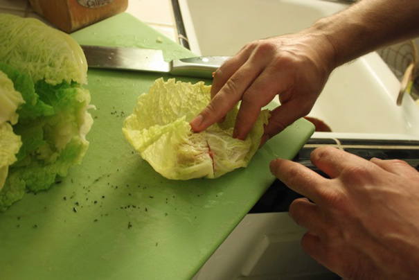 rollingupcabbage