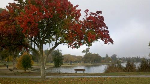 Autumn at Lake Elizabeth