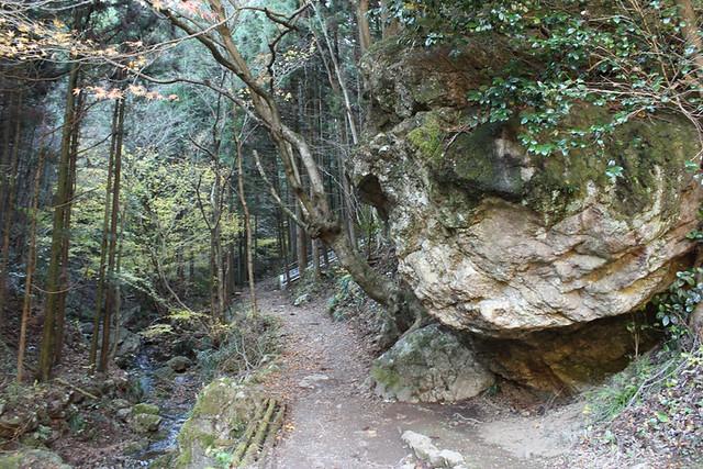 伊豆ヶ岳登山道入口