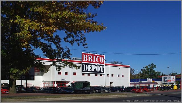 Puławy Brico Depot 1
