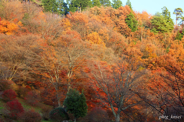 Scenery Of Late Autumn Flickr Photo Sharing
