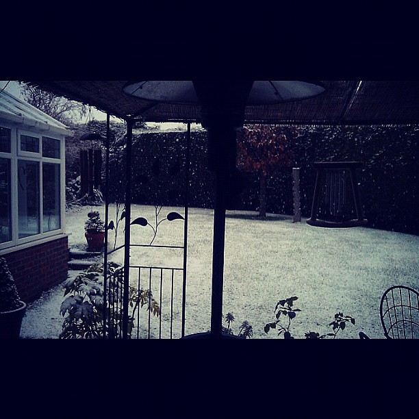 First snow of December ♥