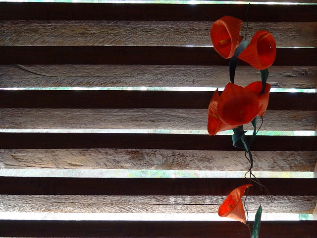 Still Life with Window Slats and Fabric Flowers - Casa de Huespedes Gundi y Tomas - Puerto Angel - Oaxaca - Mexico