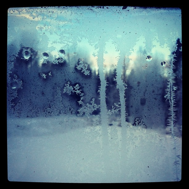 Through my frozen window
