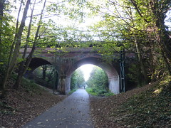 The Rodwell Trail