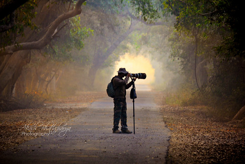 Photographer | Bharatpur