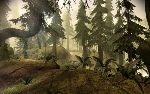Brecilian Forest (West) 002