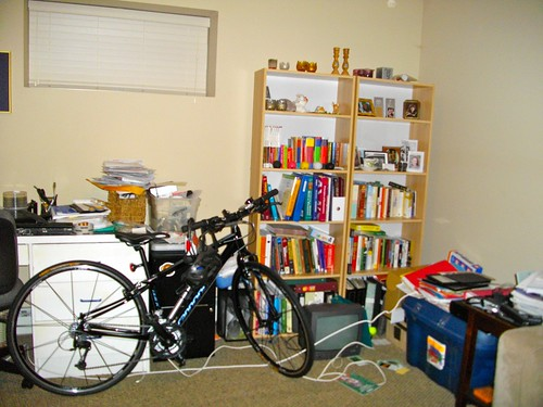 Bookshelves - before