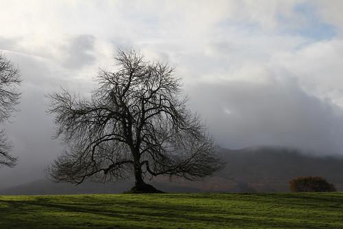 ireland canon landscape kerry ringofkerry