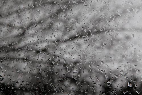 973/1000 - Raindrops by Mark Carline
