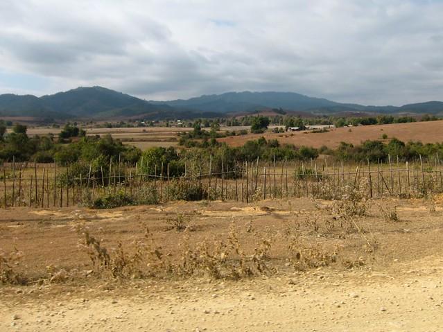 Craters from US Bombs, Phonsavan, Laos