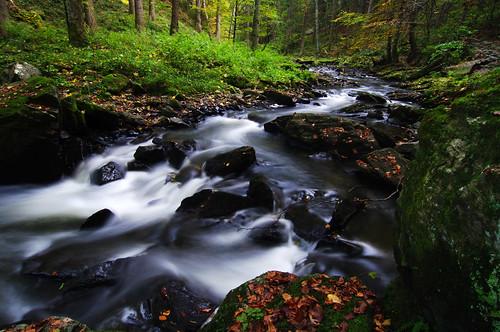 autumn fall river highlands stream czech valley czechrepublic naturalreserve vysočina česko českárepublika vysocina rezervace doubrava českomoravskávrchovina údolídoubravy údolídoubravky
