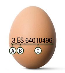 clasificacion de los huevos 2
